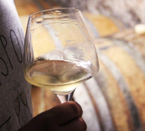 piffaudiere-degustation-vin-blanc