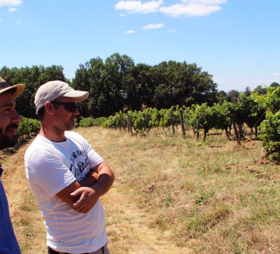 julien,auroux,vitinerant,vignes,bergerac