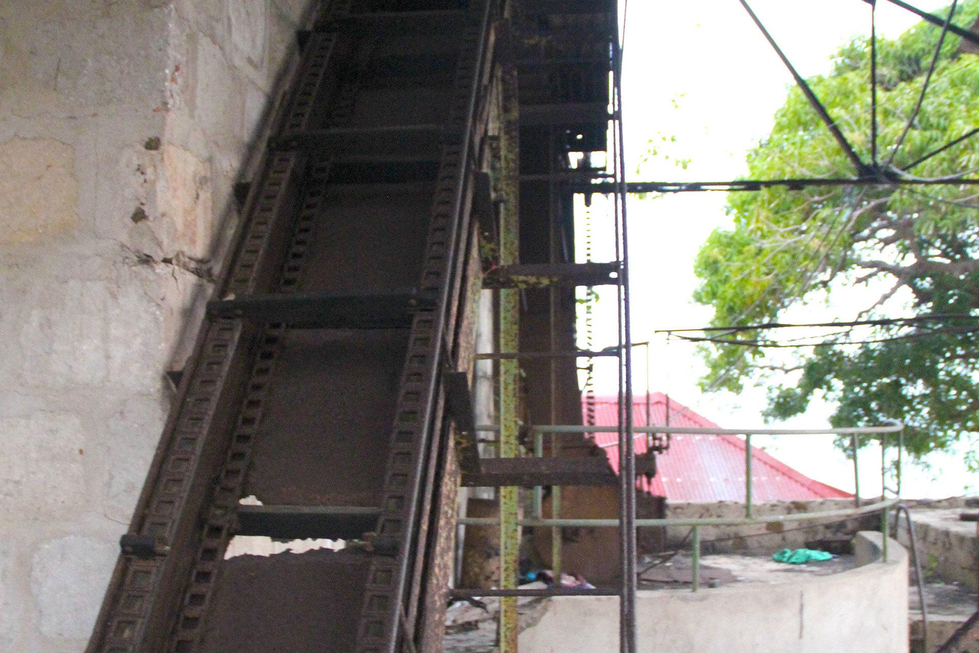 Tapis-Hardy-Distillerie